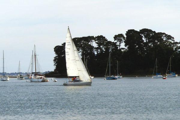 Ar Bir Sailing