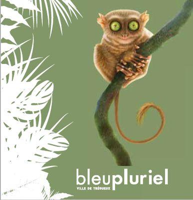 Bleu-Pluriel-Logo-2