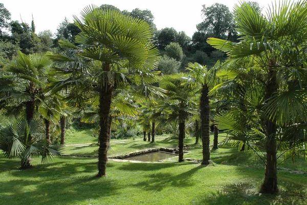 Domaine départemental de La Roche Jagu