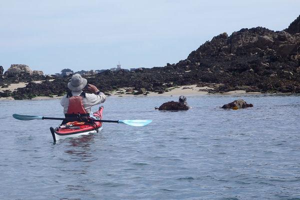 Kayak Avel Vor