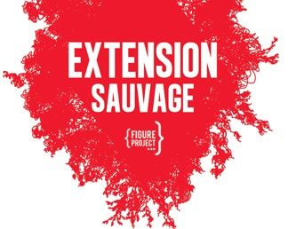 Extension Sauvage © Figure Project