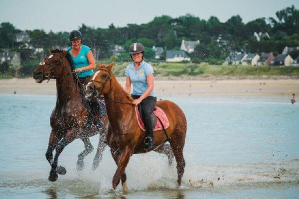 Equitation 2016 (4)