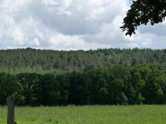 Gîte de Kerelec vue sur la campagne - Pleucadeuc - Morbihan - Bretagne