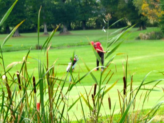 Golf-de-Tremereuc-golfeur