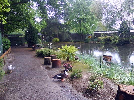 POB - Parc Ornithologique de Bretagne - Bruz