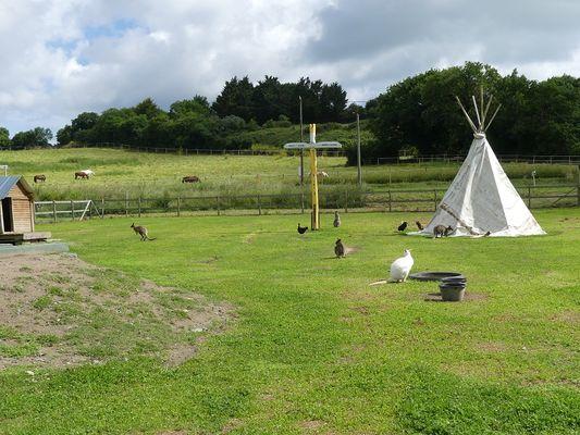 Parc animalier 2 la ferme du point du jour pour site