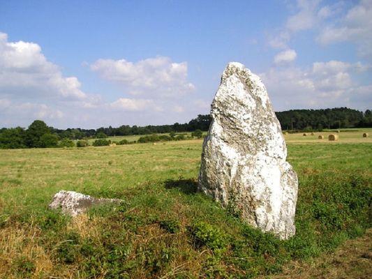 mégalithe de la maison neuve - Monterrein - Ploërmel - Morbihan