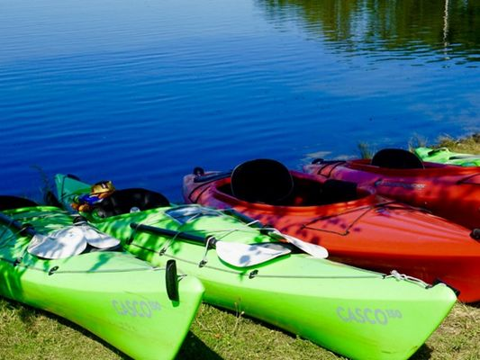 kayak-1541212-1280-6