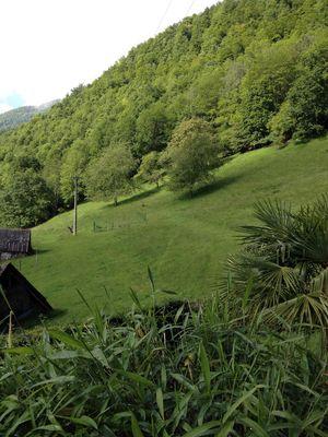 Maison du Coue Gite Verdure Vue
