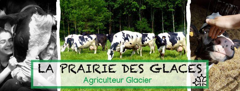 Exploitation-La-Prairie-des-glaces-BUZET-SUR-TARN