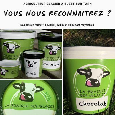Pots-de-glaces-La-Prairie-des-Glaces-BUZET-SUR-TARN