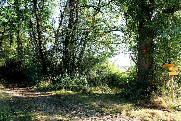 Pouchot - Le Burgaud-bois-crédit-OTHautsTolosans (3)