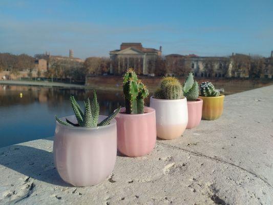 TiPii Atelier terracotta cactus pot toulouse artisanatpetit
