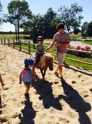 mini poney 2 ecurie d en cayla LASSERRE