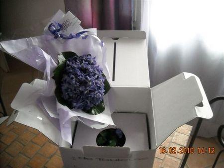 Bouquet de violette Viola 2000 RENNEVILLE