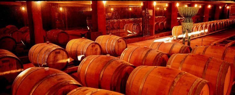 chai a barriques chateau bellevue FRONTON
