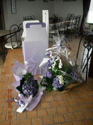 Composition florale violettes Viola 2000 RENNEVILLE