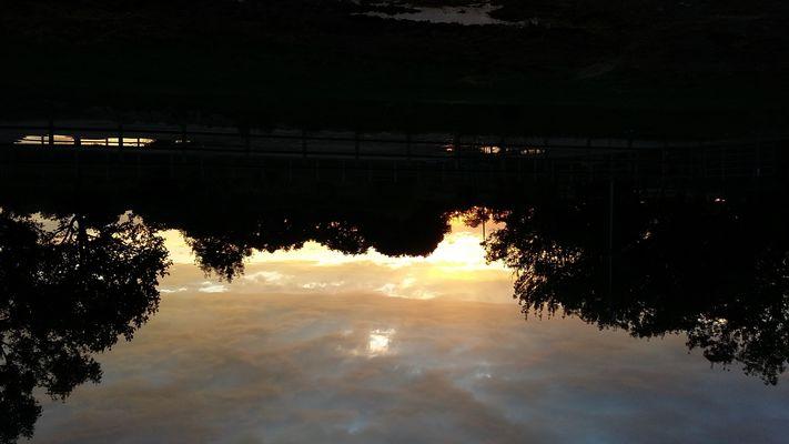 coucher soleil ecurie d en cayla LASSERRE