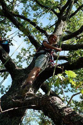 grimpe arbre escapade MONTBRUN BOCAGE