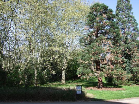 jardin compans 2 TOULOUSE