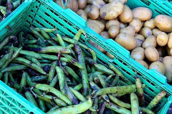 légumes-credit-OTHautsTolosans