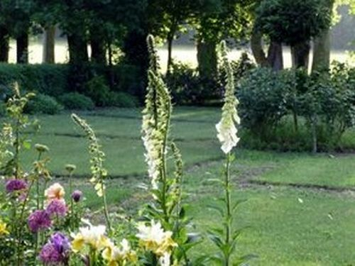 parc chateau FONBEAUZARD