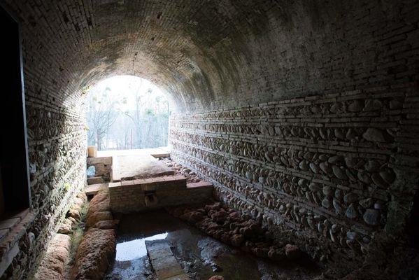 tunel domaine de la terrasse CARBONNE