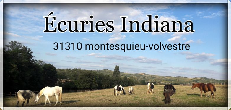 2curies d'Indiana