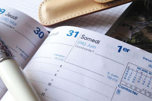 Organisation, gestion de vos agendas et déplacements - Martine Pin