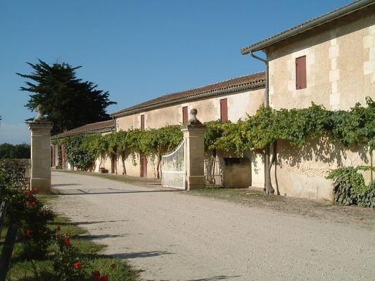Allée1 - Château Noaillac