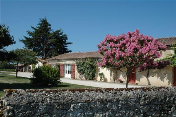 Chateau-Noaillac3-2