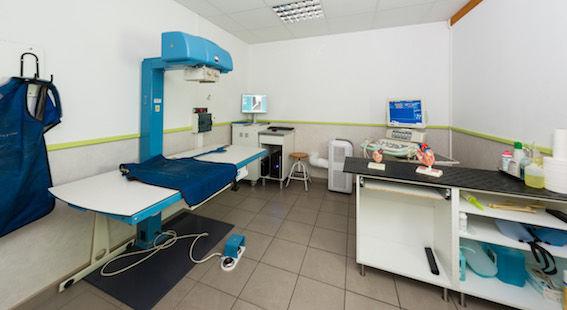 Clinique Vétérinaire4