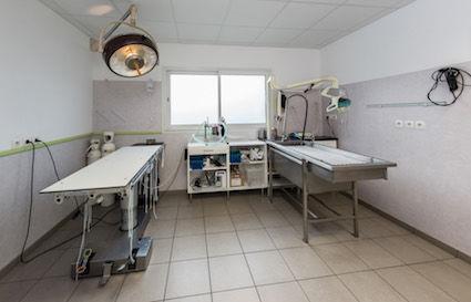 Clinique Vétérinaire7
