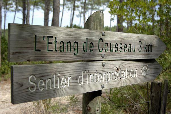 Direction étang de Cousseau