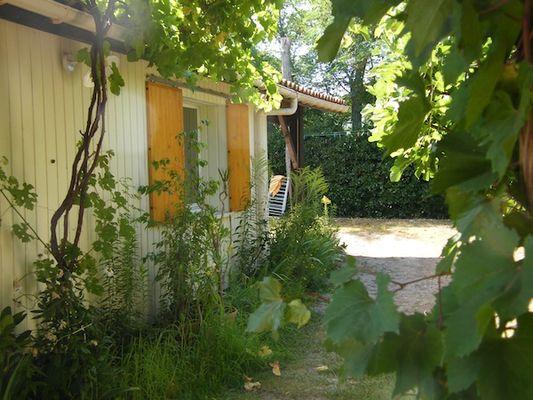 Jardin Coté Ouest