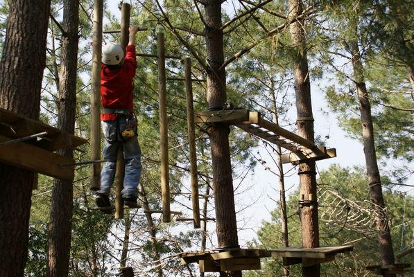 La Forêt des Accromaniaques8