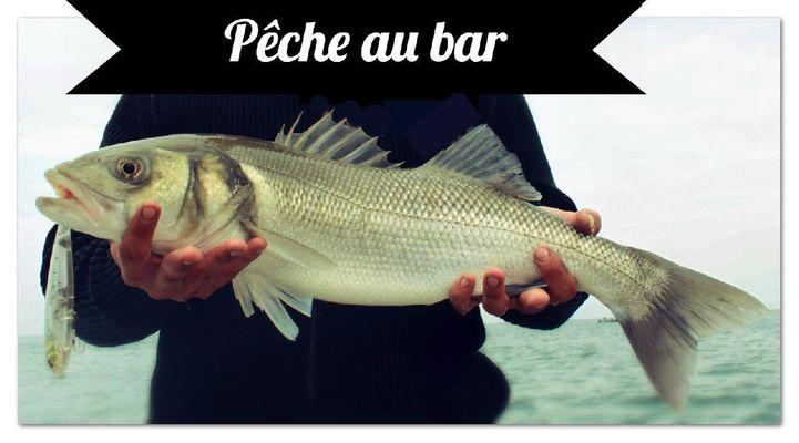 Pêche Arcachon1