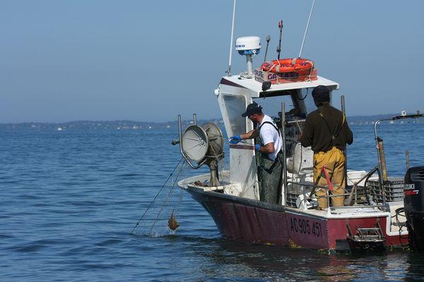 Pêche Pescatourisme