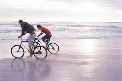 Vélos - Ericycles