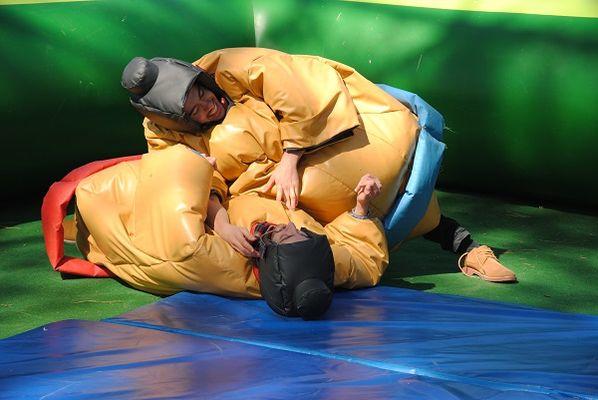 combat-sumo- (2)