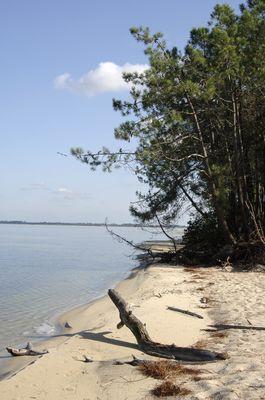lac lacanau