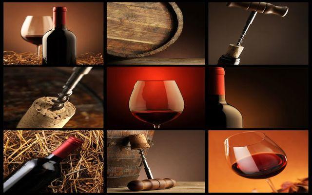 vins-sites--1-