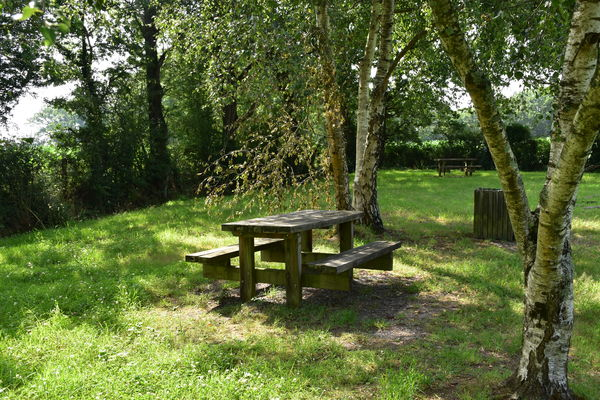 aire-picnic-marland