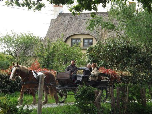jean-sebastien-crusson-promenades-en-briere-6-caleche-1233832