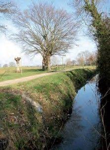 le-coin-carre-randonnee-1393262