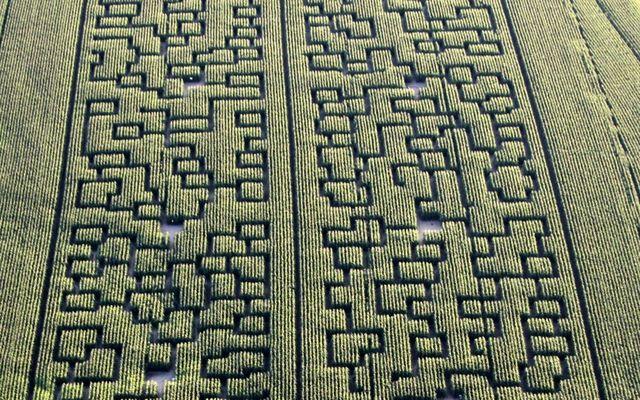 popcorn-labyrinthe-5