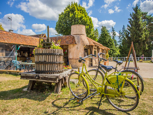 camping_sites_et_paysages_les_saules_cheverny_loire_valley®2015_Kinaphoto_32