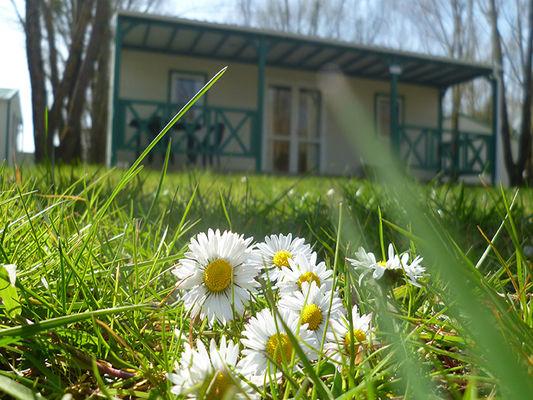 camping_sites_et_paysages_les_saules_cheverny_loire_valley_vacances_location_chalet_tout_confort©Adt41-MirPhoto