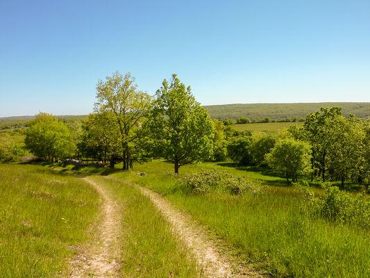 05Poujade - Chemin herbeux sur les Causses© Lot Tourisme - C. Sanchez