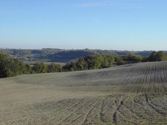 Saint Laurent Lolmie : Paysage Agricole